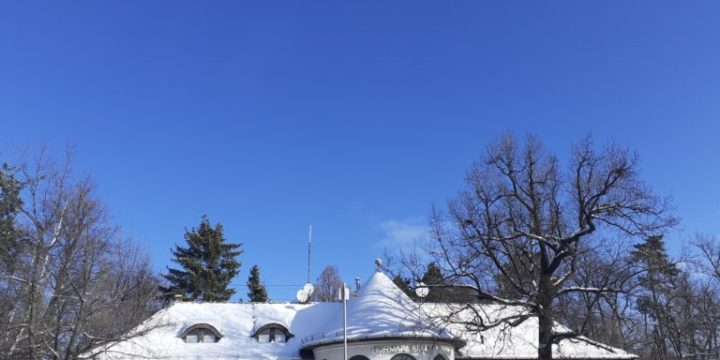 Normafa havazás után – GALÉRIA